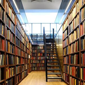 Библиотеки Репьевки