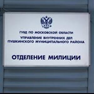 Отделения полиции Репьевки